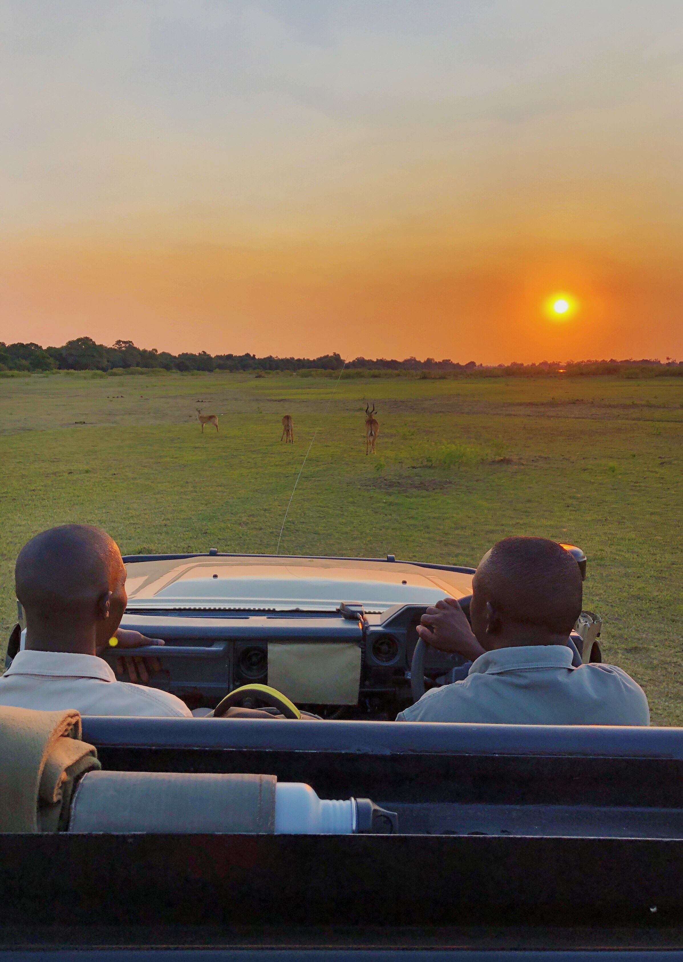 THE DAILY BEAST: Why Zambia Should Be Your First Safari