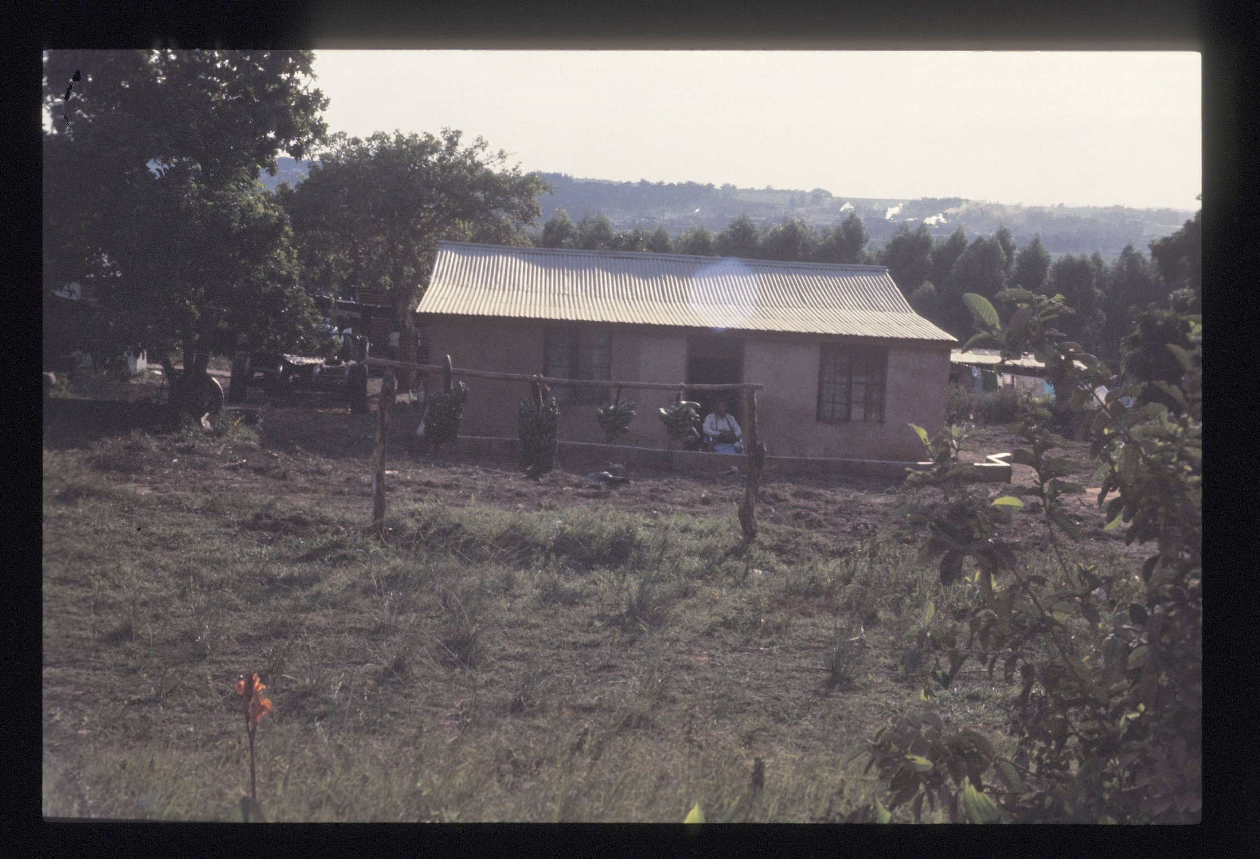 African House.jpg