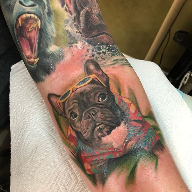 "Yaaaayyyyyy tropi-dawg"" #frenchies added to my boy kenny today☁️☁️ tops healed—- —- —-#nohardfeelings #wip #eternalink #worldfamousink #safaridog #coralspringstattoo #browardcounty #dogportrait #frenchiesofinstagram #frenchie"
