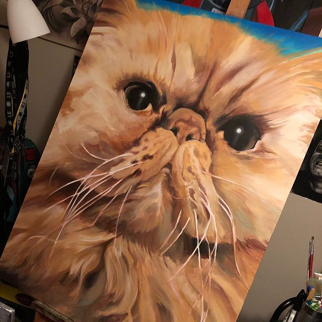 "Almost done w the boog"" #wip #acrylicpainting #persiancat #tuckerarts #chubbs #booger #petpaintings #southflorida"