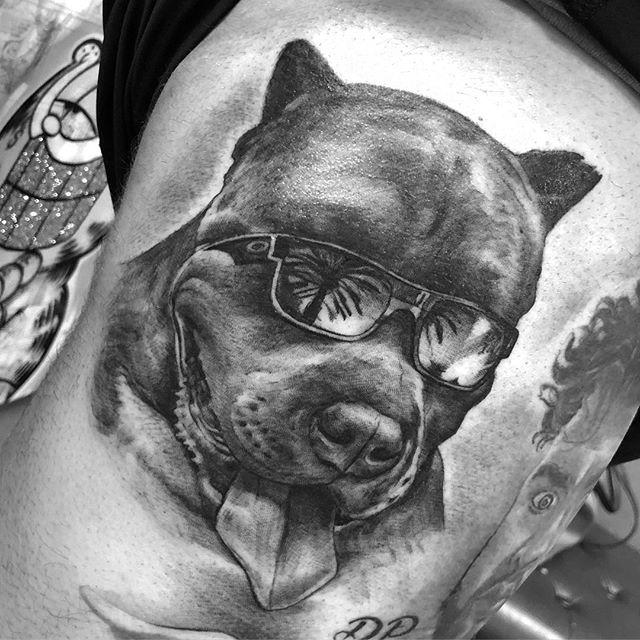 "Puppy time "" did this pic of smoke today #pitbull #pitbullsofinstagram #blackandgreytattoo #nohardfeelings #bnginksociety #worldfamousink #southflorida #coralsprings #browardcounty #lestdomorepuppys @jaysab16"