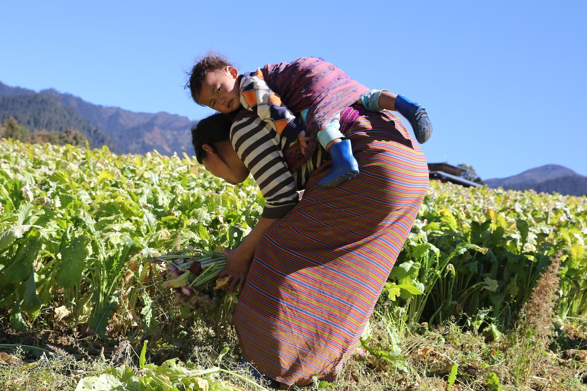 Bhutan-2016- C26O0025.jpg
