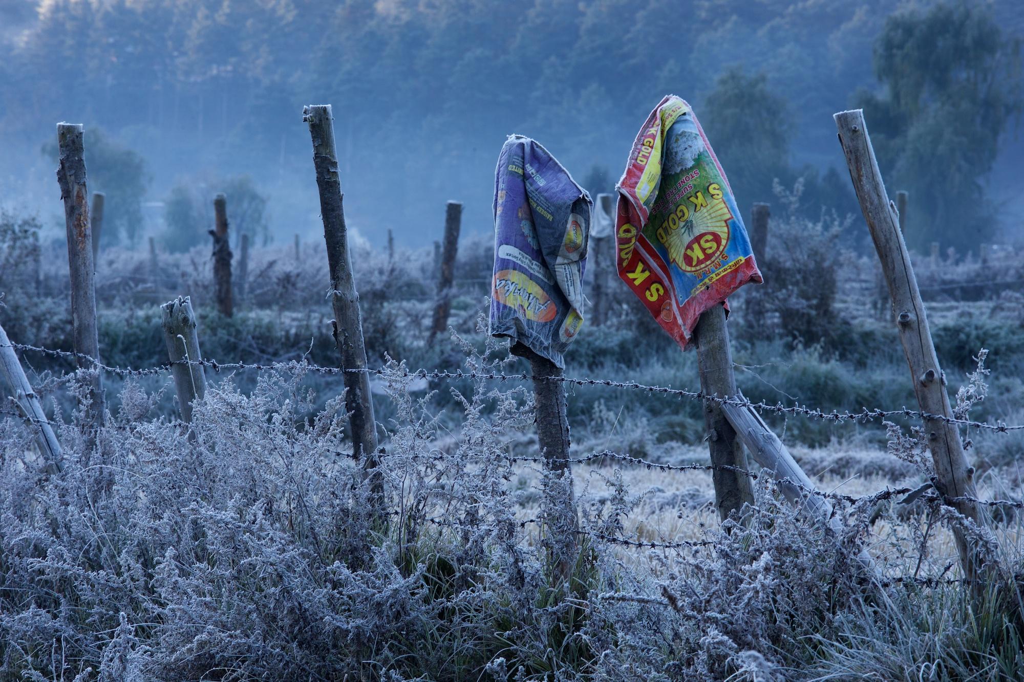 Bhutan-2016- C26O9461.jpg