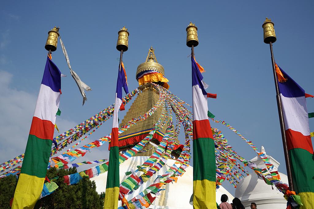 Nepal-11-17- DSC01567.jpg