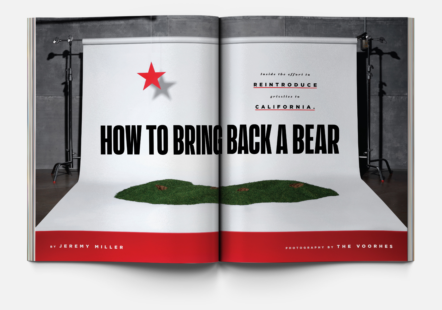 "Above:  ""How to Bring Back a Bear"", photography by:  The Voorhes"