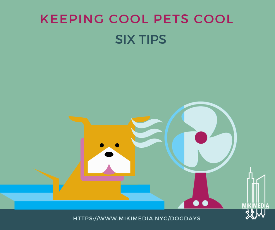 Keeping Cool Pets Cool Infographic - The Dog Days of Summer are here (at least in NYC). The hot, muggy days are challenging for us in shorts, but what about our furry family members? Check (or download) the infographic for six hacks to help them stay them cool.