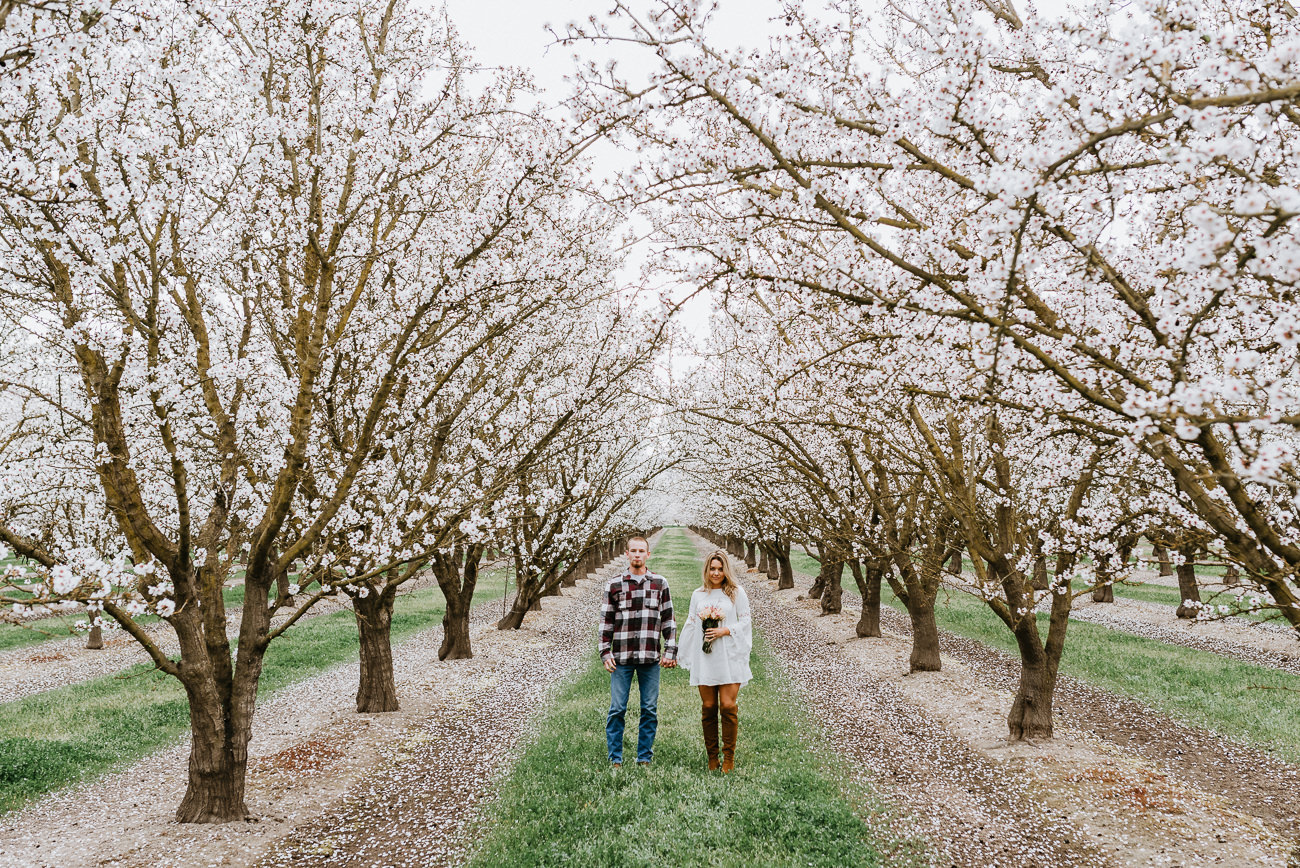 Engagement-Session-Almond-Orchard-California-36.jpg