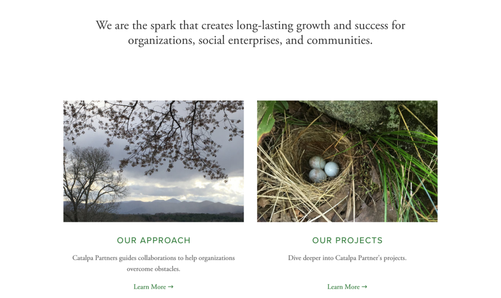 Catalpa_Parnters_Homepage2.png