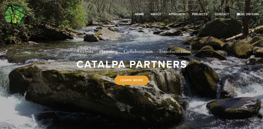 Catalpa_Parnters_Homepage.png
