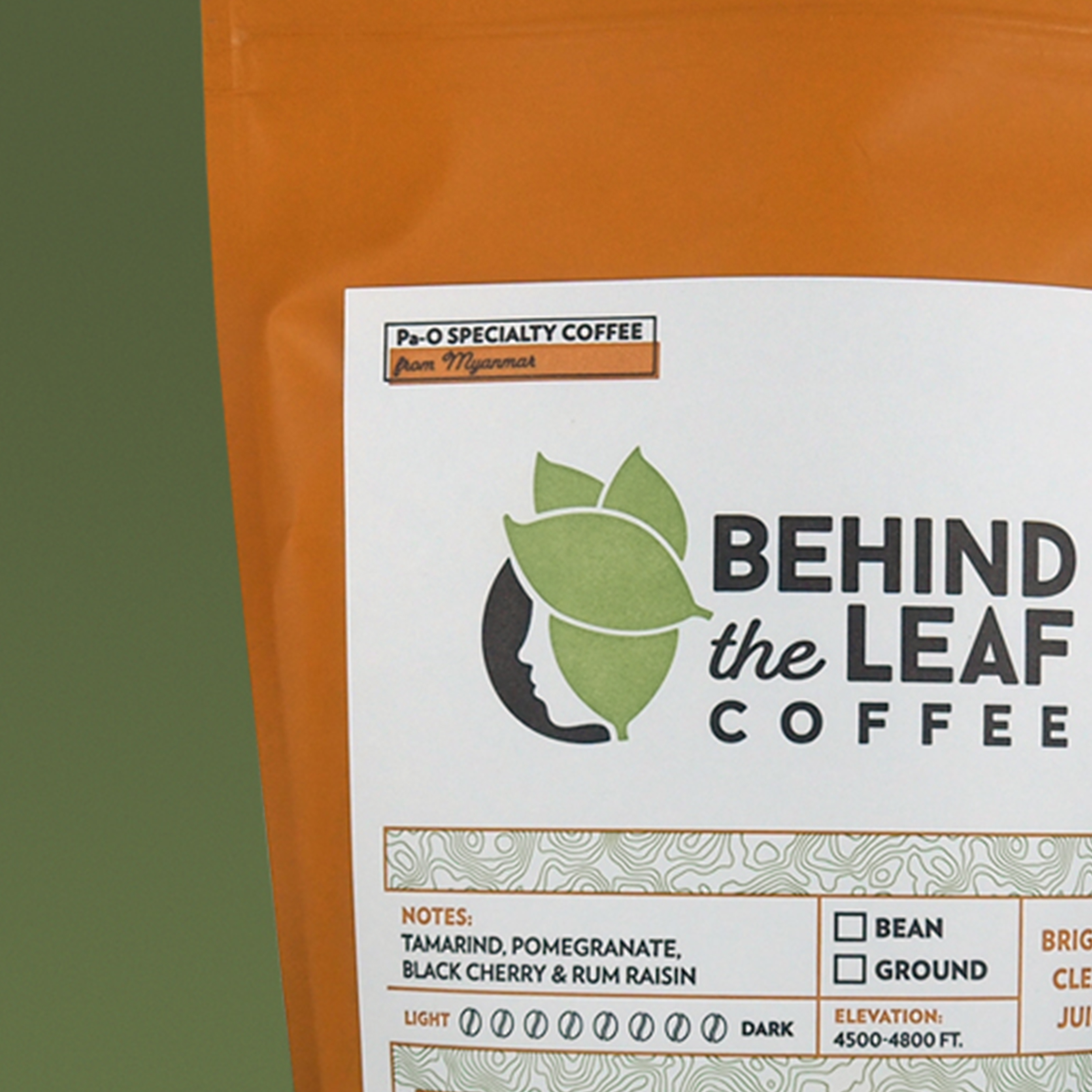 Behind The Leaf Coffee—Branding