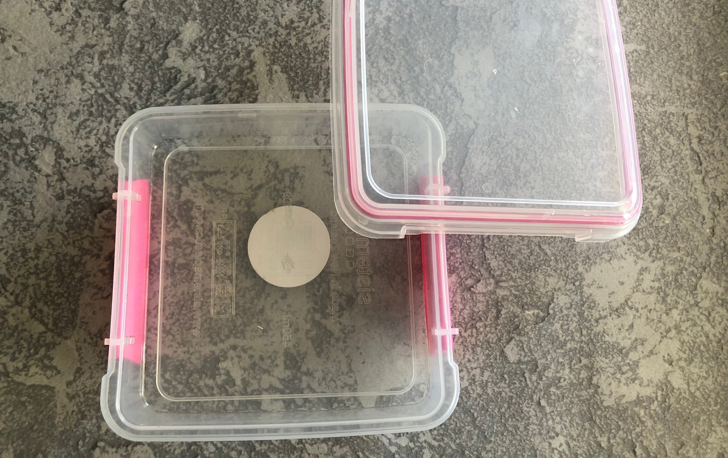 School lunch container sistema keto and low carb
