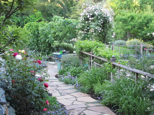 This walkway leads to the enclosed vegetable garden to the right and several beds of herbs interplanted in the landscape. There is a large fig tree next to a weeping mulberry.