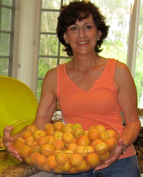 Here I am with one bowl of just-harvested apricots. Yum, yum.