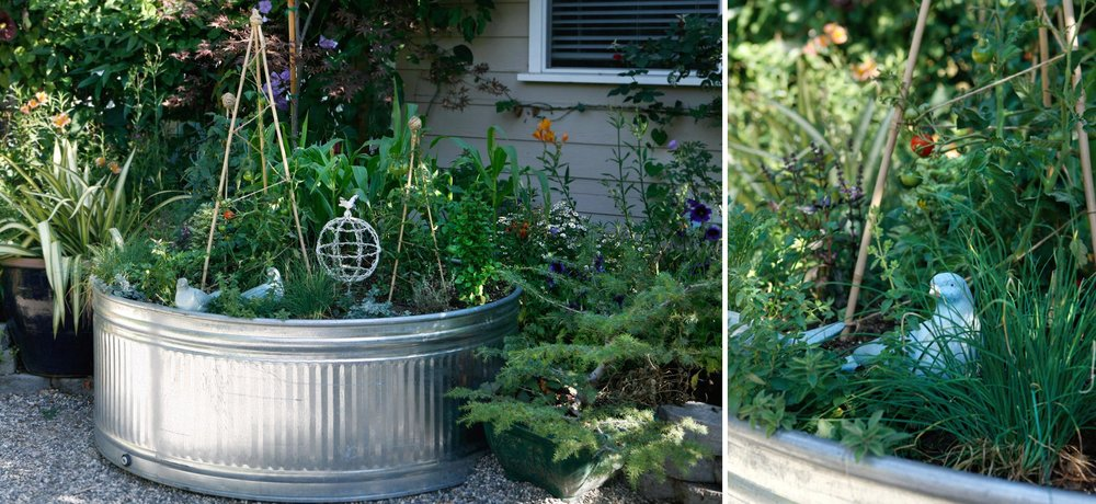 paseo-tranquillo-04-water-trough-planter.jpg