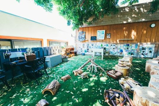 We leveled and finished this outdoor classroom with natural seating options (logs) and a comfortable grass like surface.