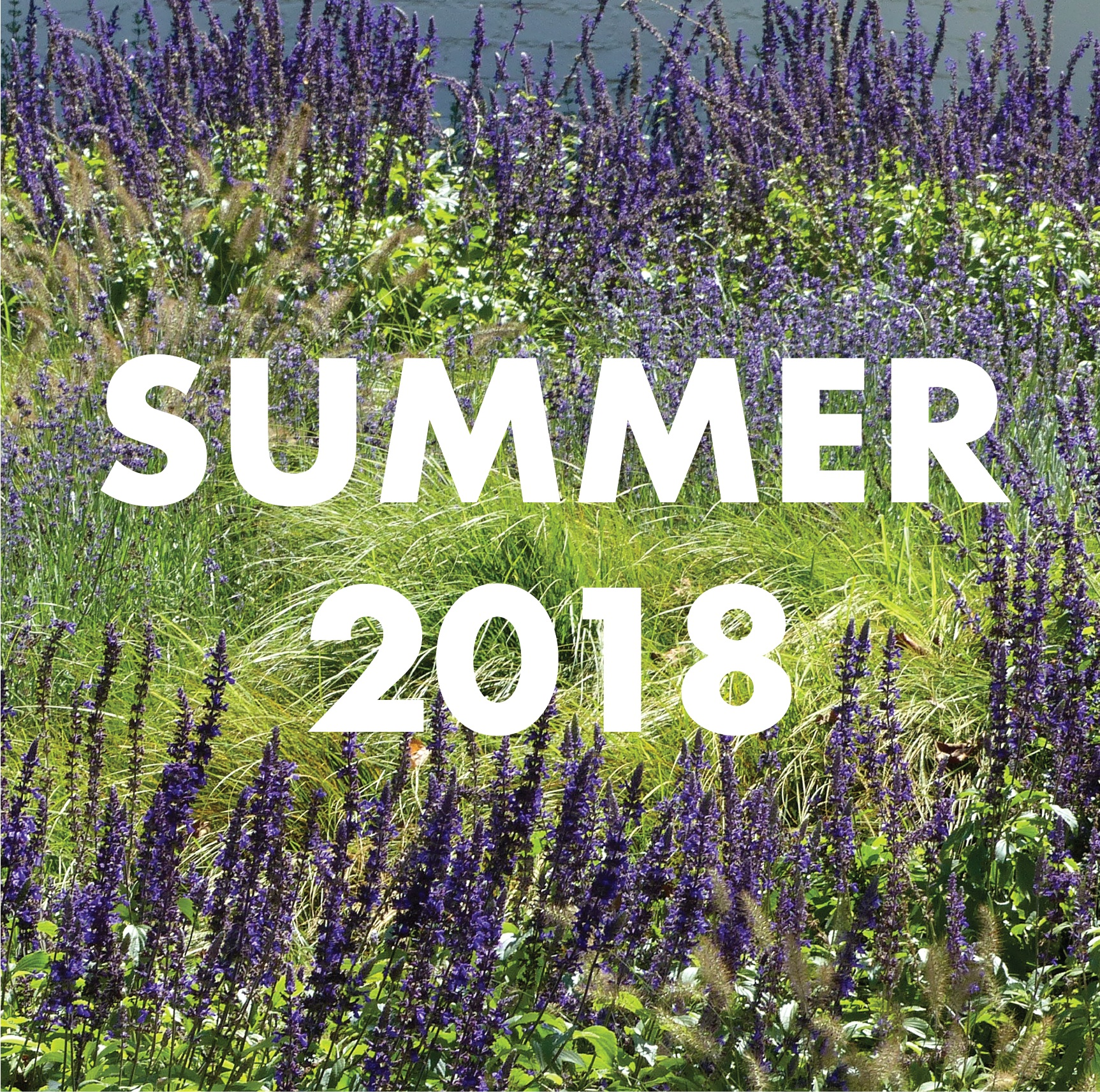 apld cld archive cover summer 2018.png
