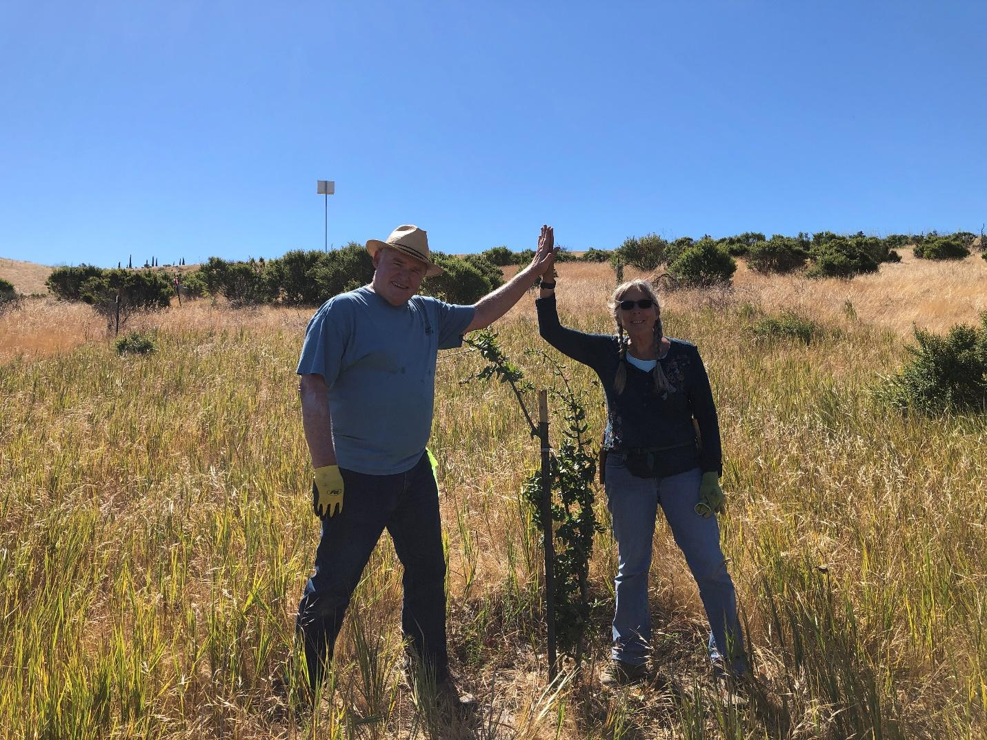 Steve, Alison, and a 4-year-old oak sapling newly released from its vole-proof cage, with an owl box in the background. Near Lake Herman.