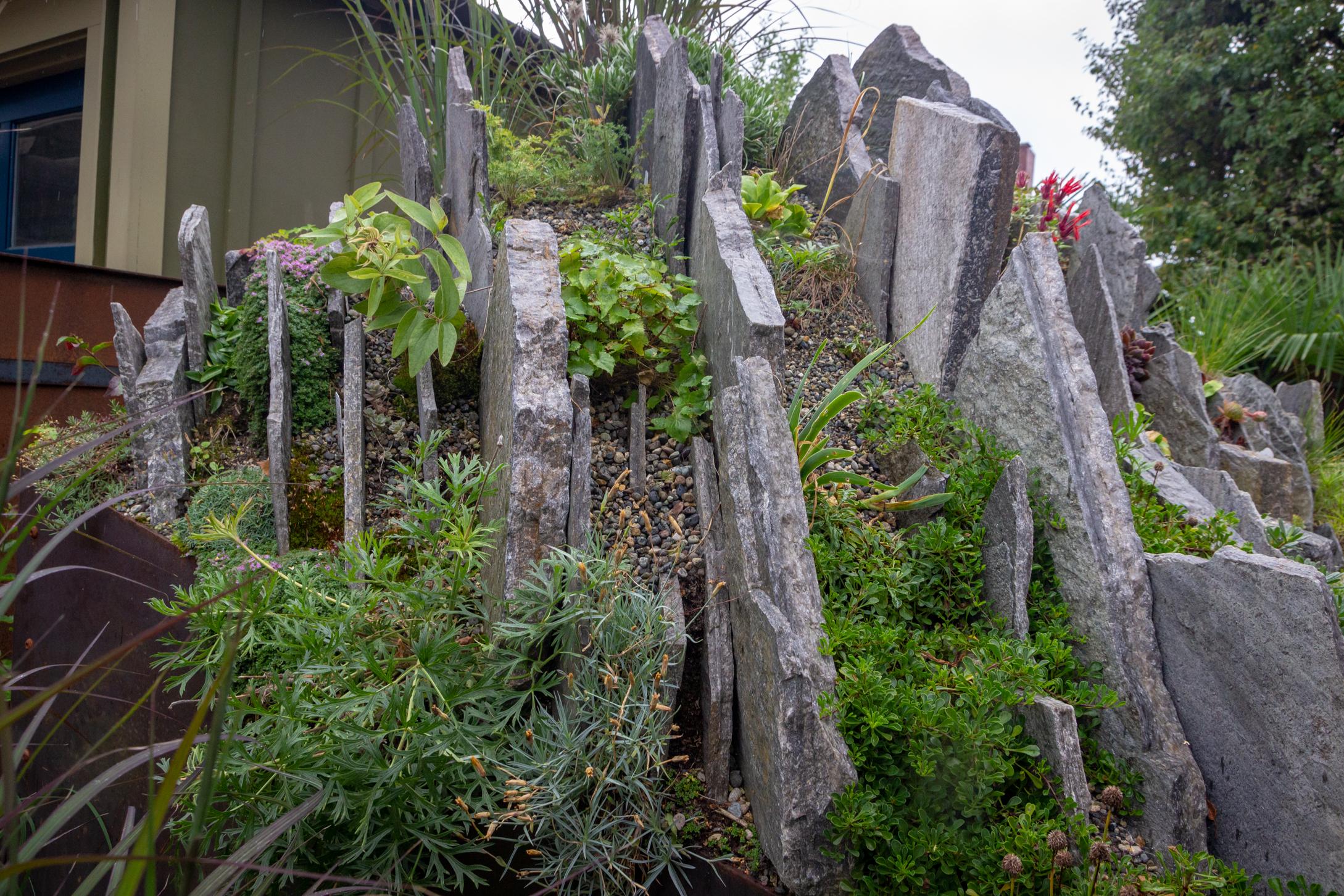 Garden #3