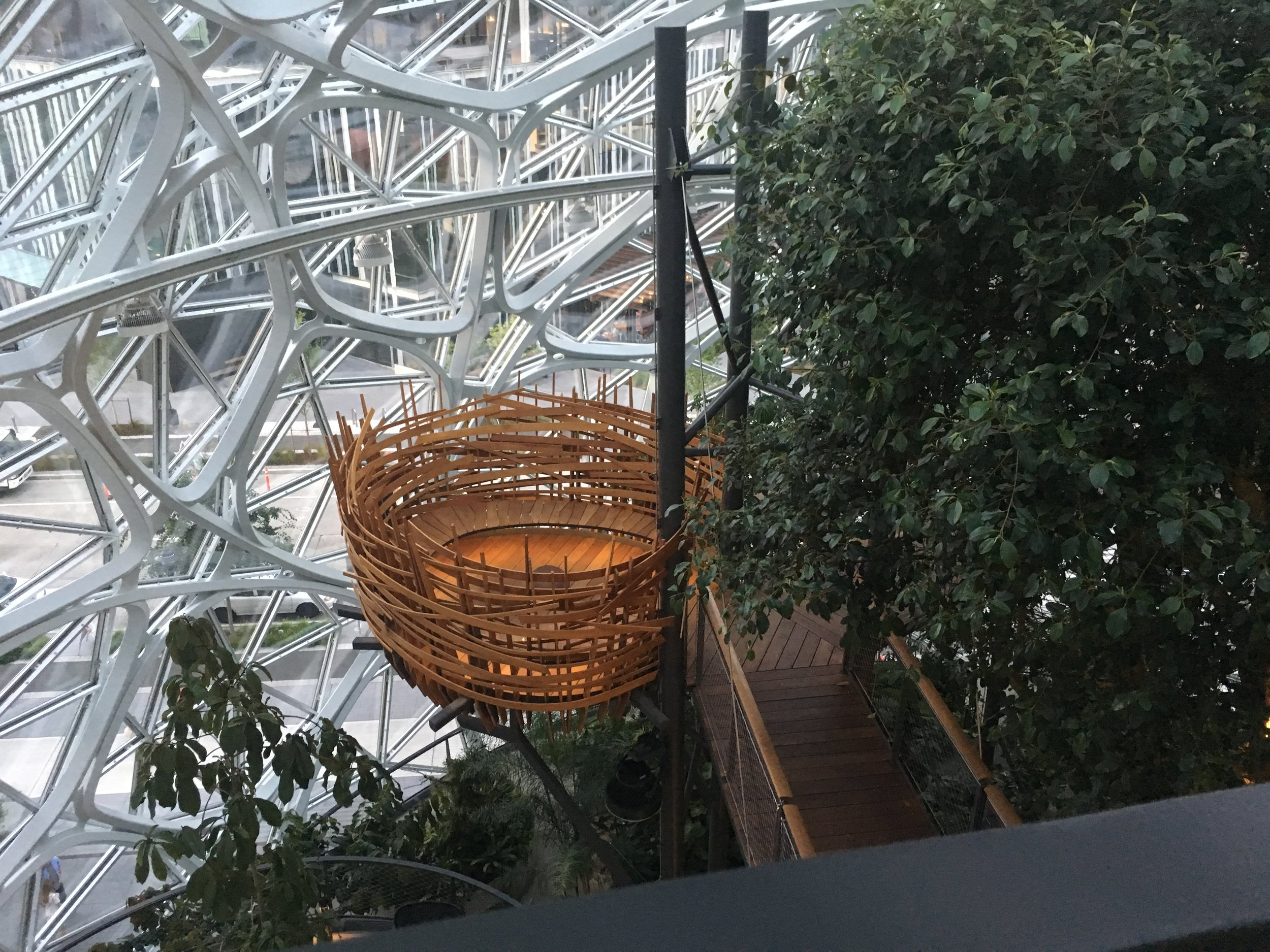 BIRD'S NEST AMAZON SPHERES.jpg