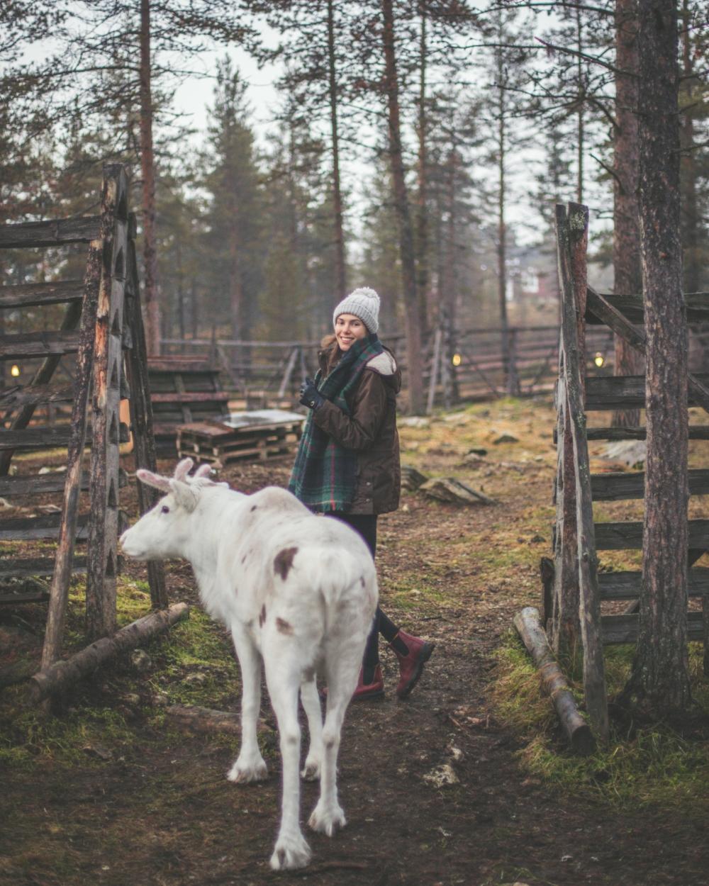 Finland -  @planet_pixels