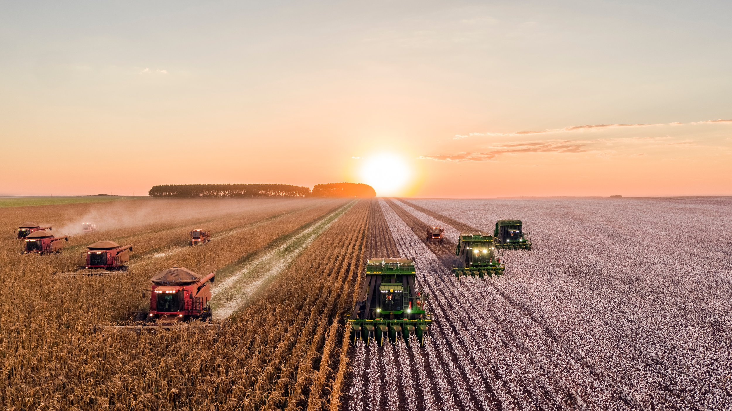 Industrial agriculture promotes giant corporate control of our farms.