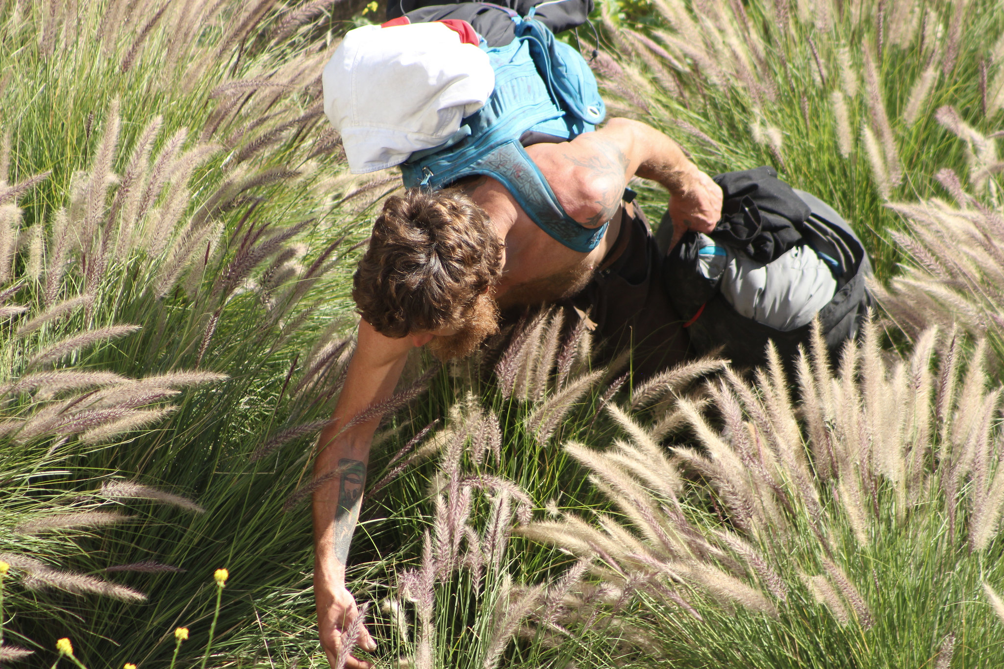 Foraging in a field while carrying bags of supplies: is this what survival looks like post-apocalypse?
