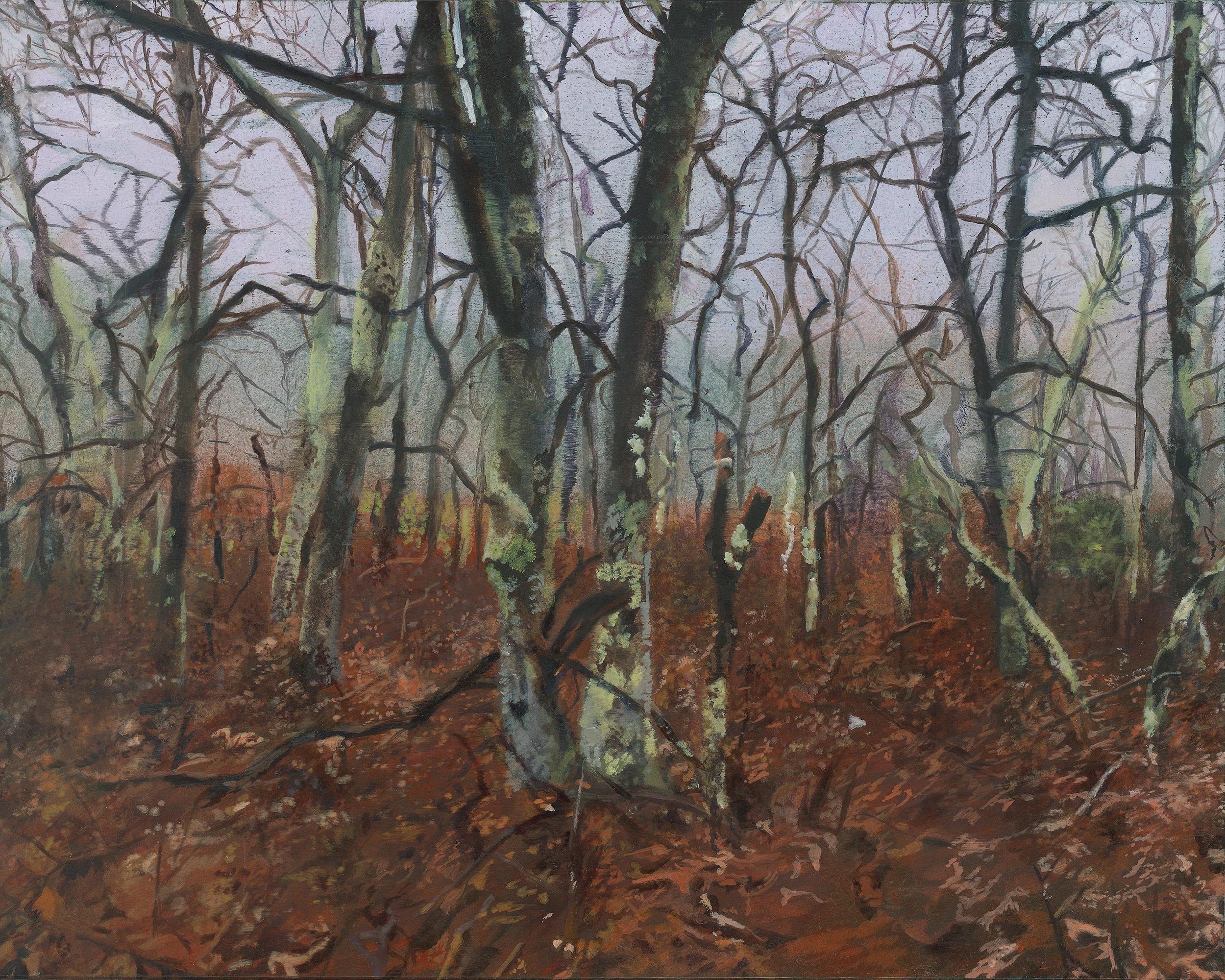 Emma Tapley: Forest, Sag Harbor