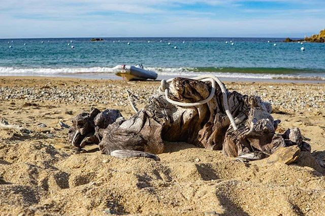 Liveaboard beach life. ... ... #sailingaria #sailboatlife #liveaboardlife #catalinaisland #emeraldbay #twoharborscatalina  #favoriteanchorages