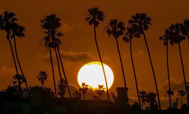 Alamitos Bay at Sunset. ... ... #alamitosbay #californiasunset #everydayisanadventure #travellife #californialove #sailboatlife #sailingaria #sunrisetosunset