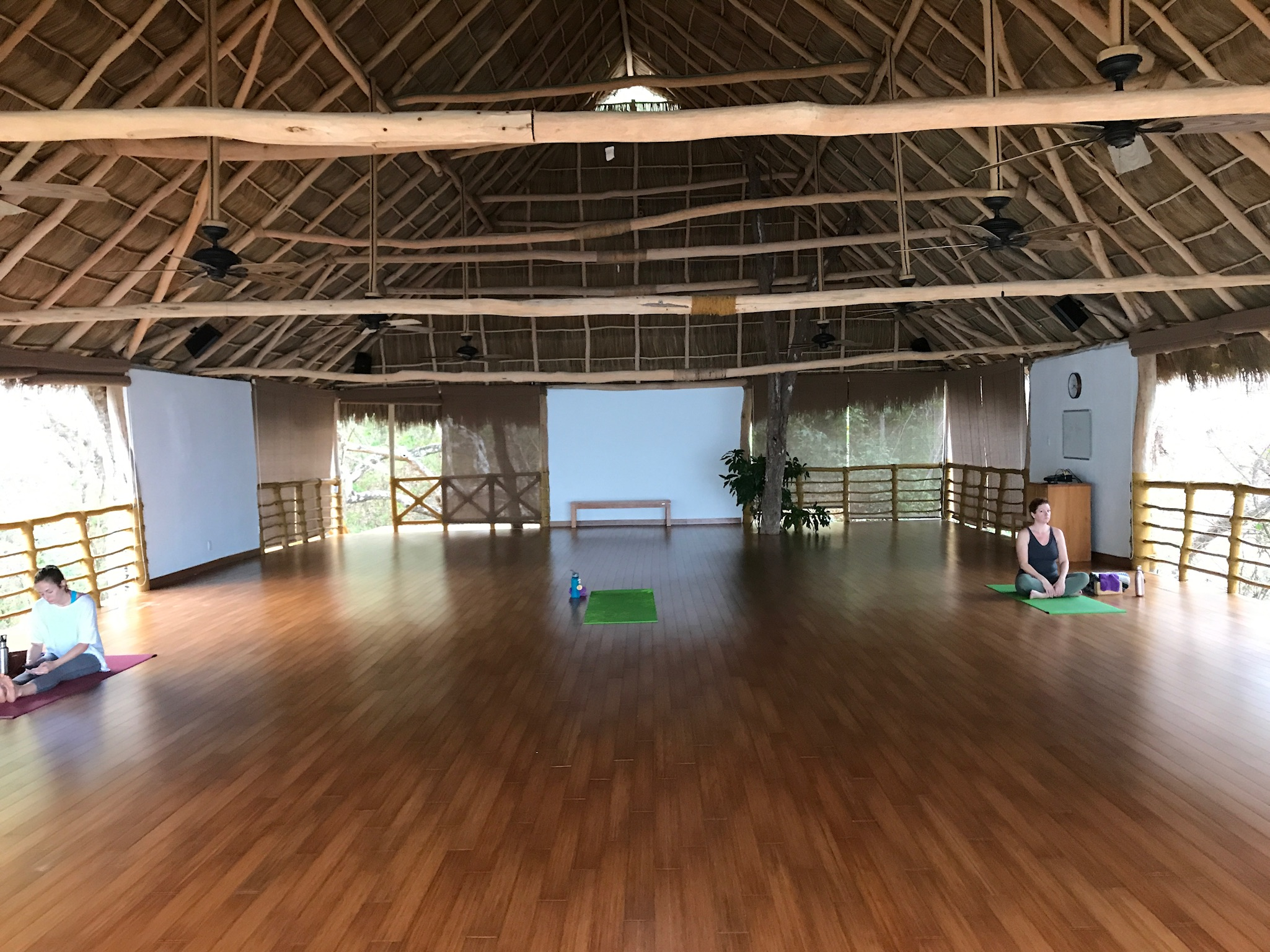 Also the Jungle Studio where yoga classes can be held.