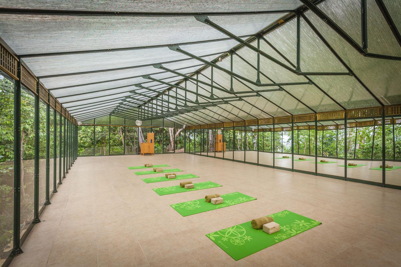 Greenhouse studio where yoga classes can be held.