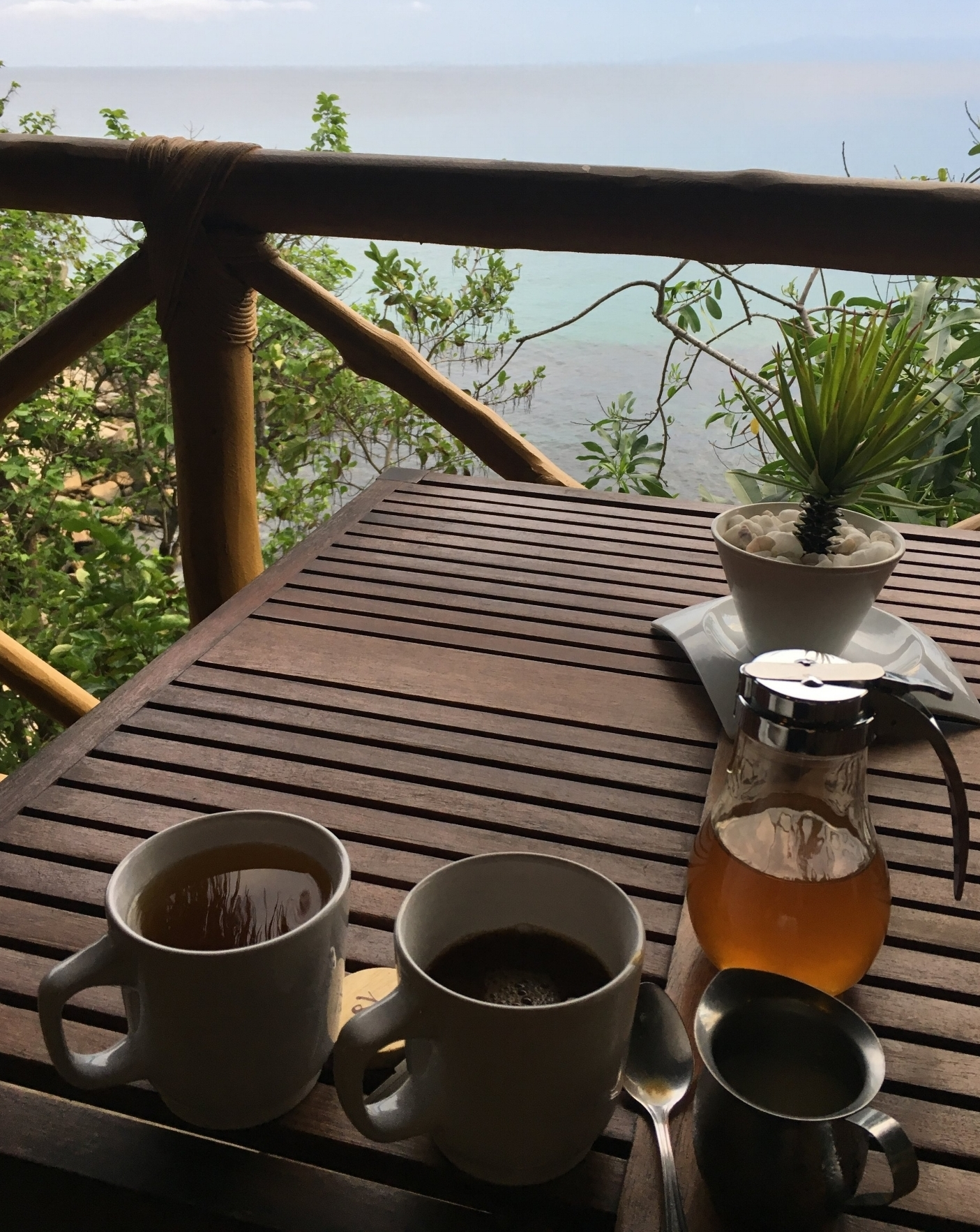 Coffee, fresh almond milk, local honey with this morning view