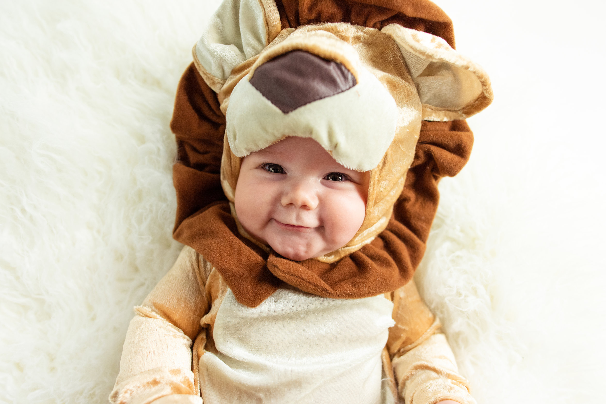 Leon the lion at three months old during Halloween 2018—just look at that precious smile! And that little nose!!!