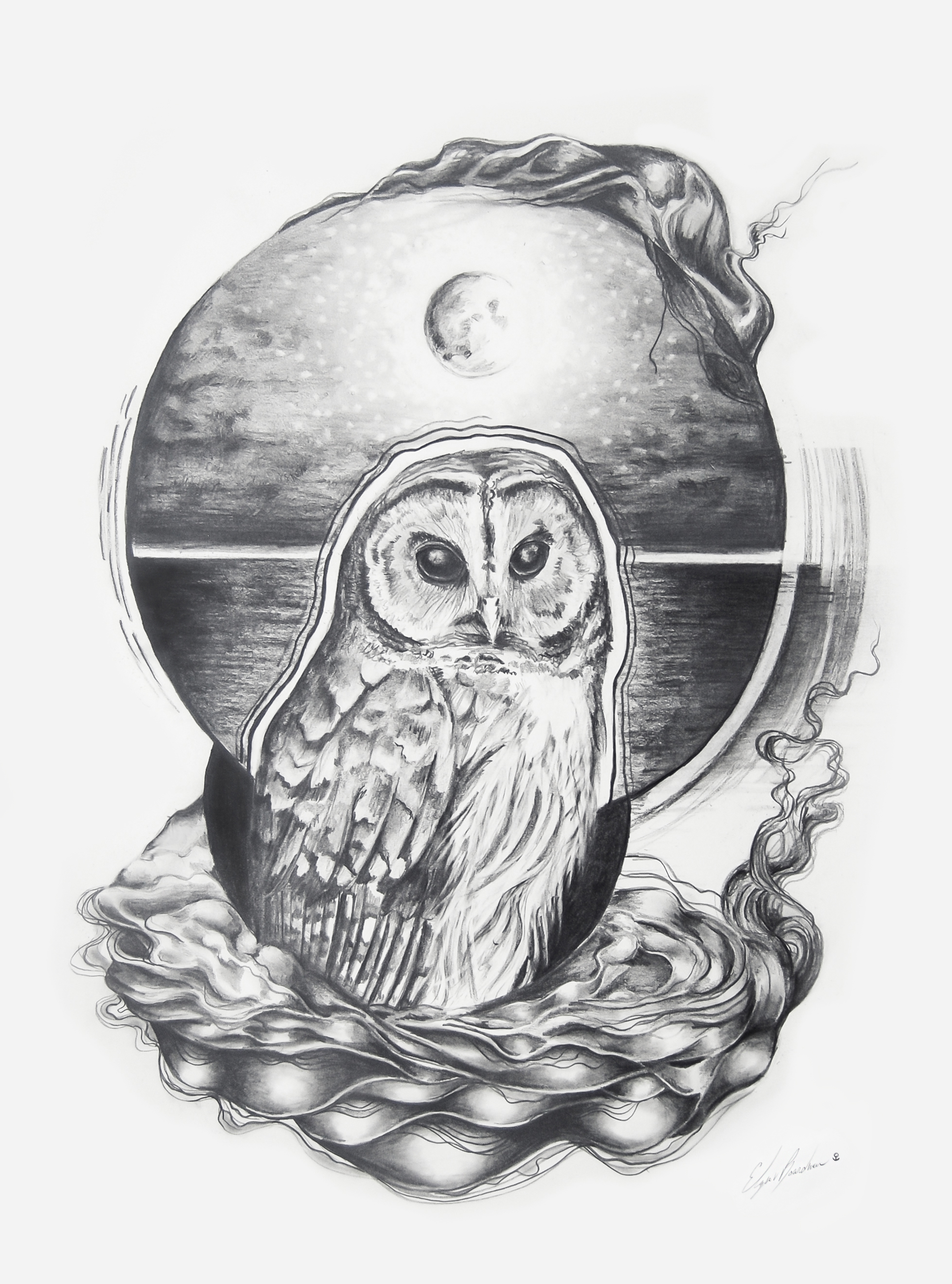 Barred Owl Medicine.jpg