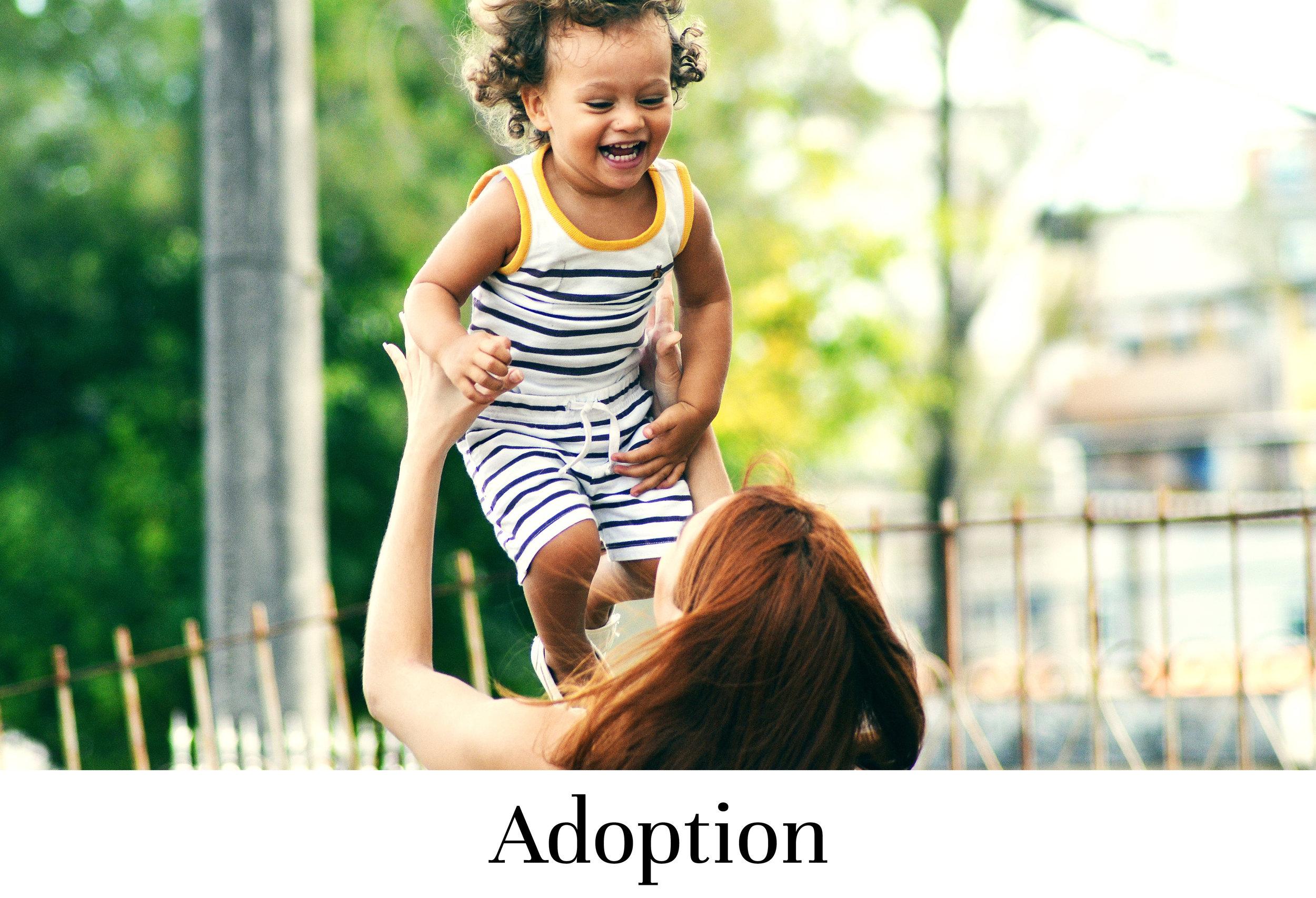 adoption3.jpg