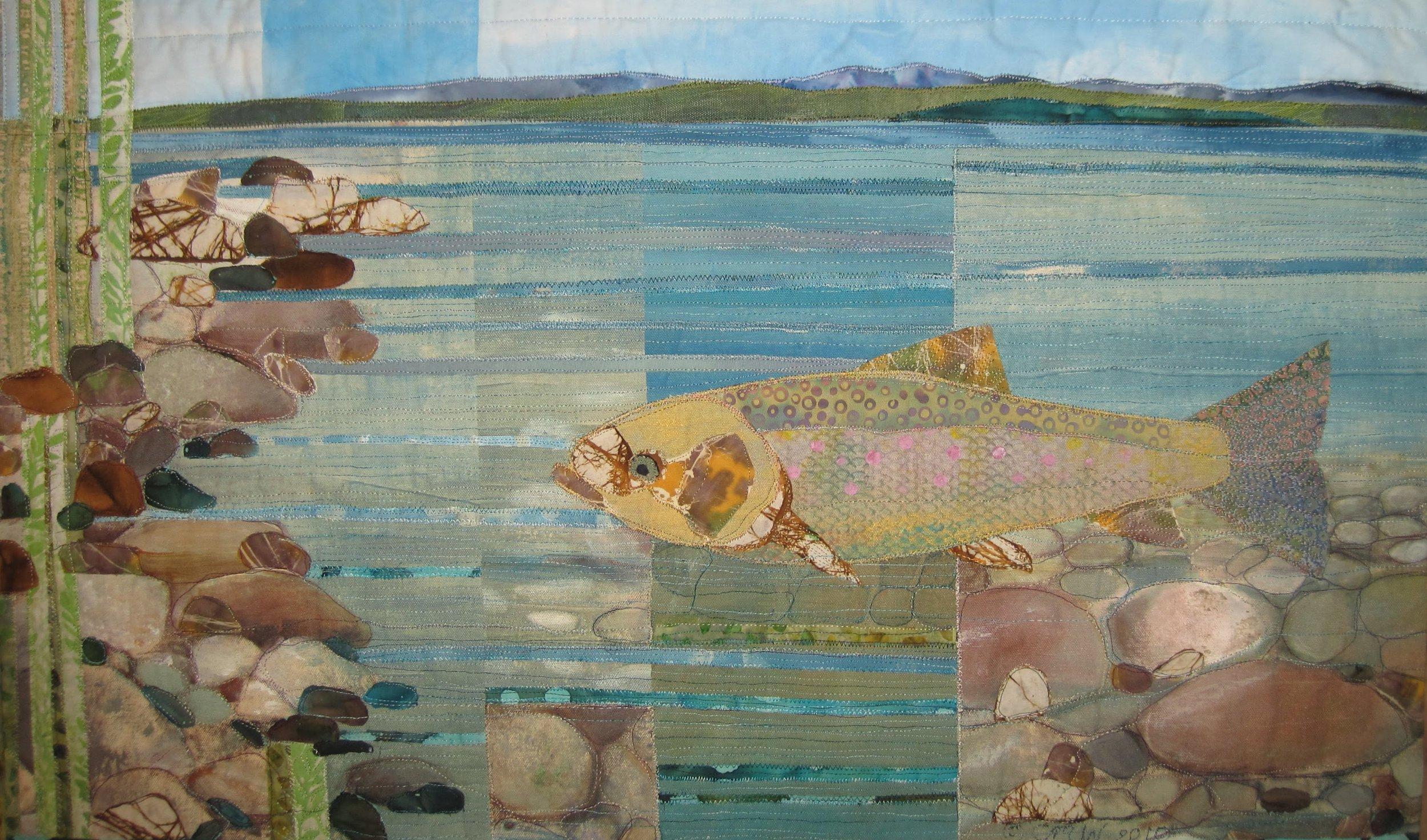 Lake Trout Rangely