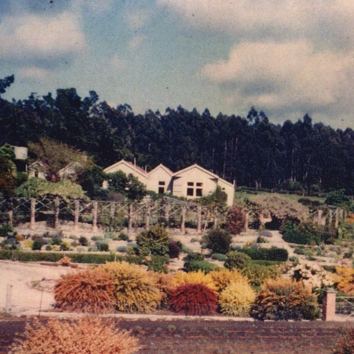 1960s - Bridestowe Homestead