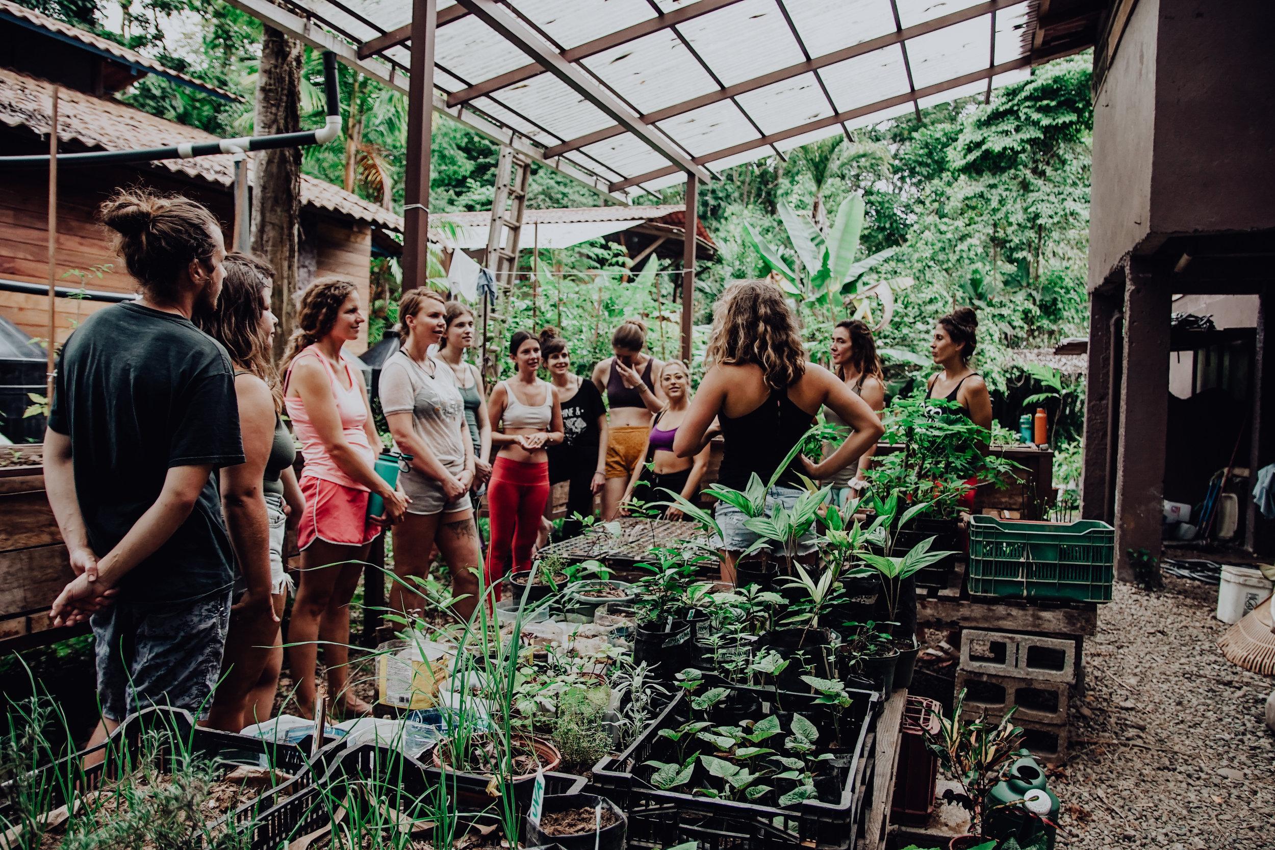 Organic Garden and Greenhouse Tour 2.jpg