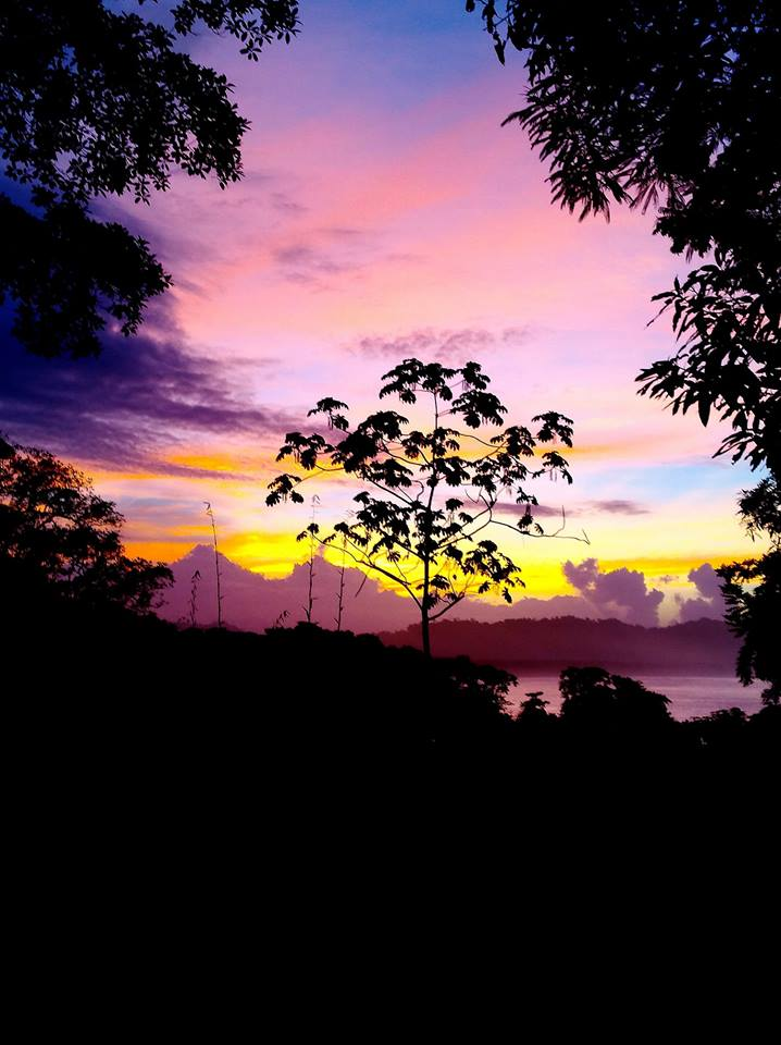 Sunset OM at Cashew Hill.jpg