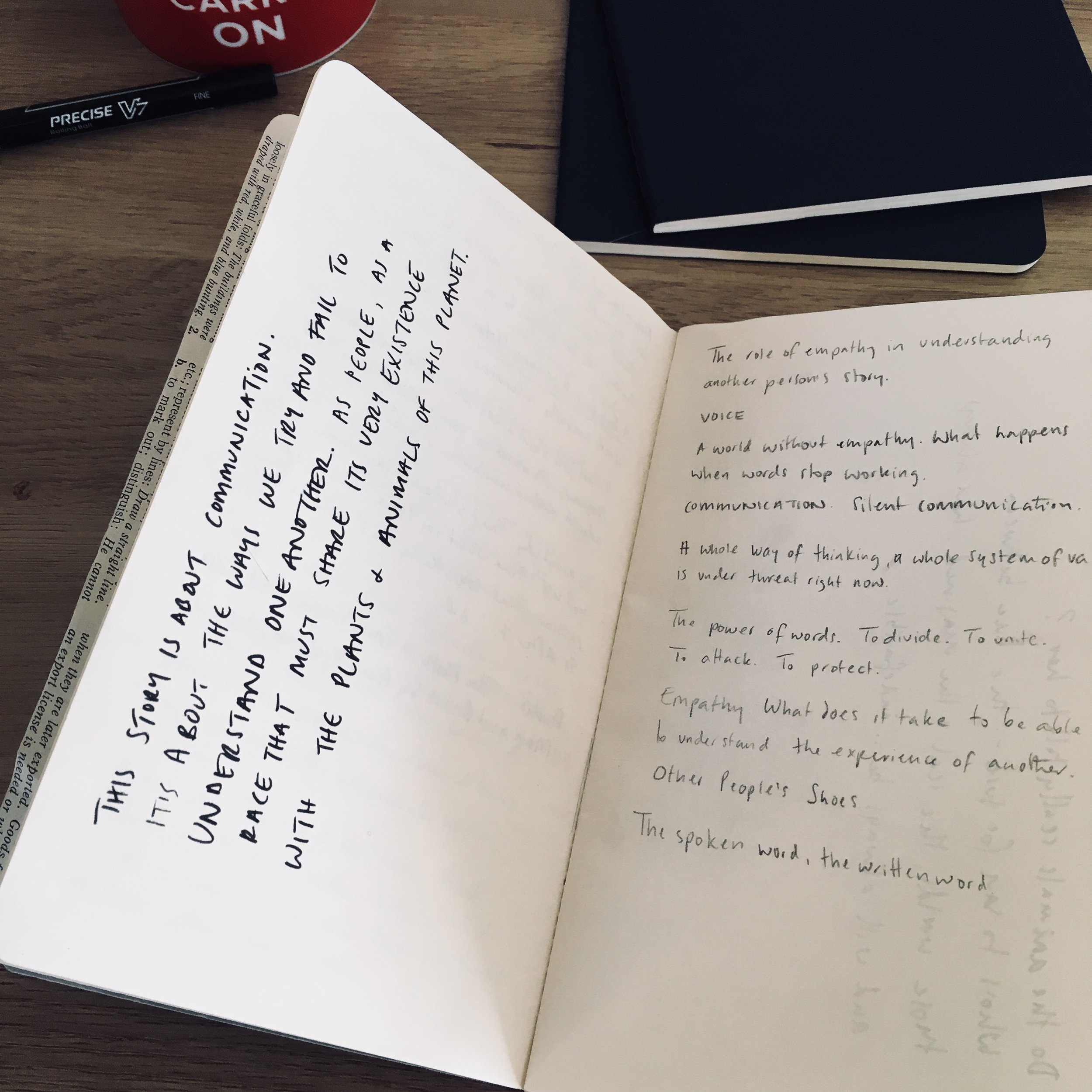 My notebooks are full of messy thoughts, unanswered questions and wild possibilities. Eventually, if I'm lucky, the words coalesce into a kernel, something of an idea, a possible starting point.