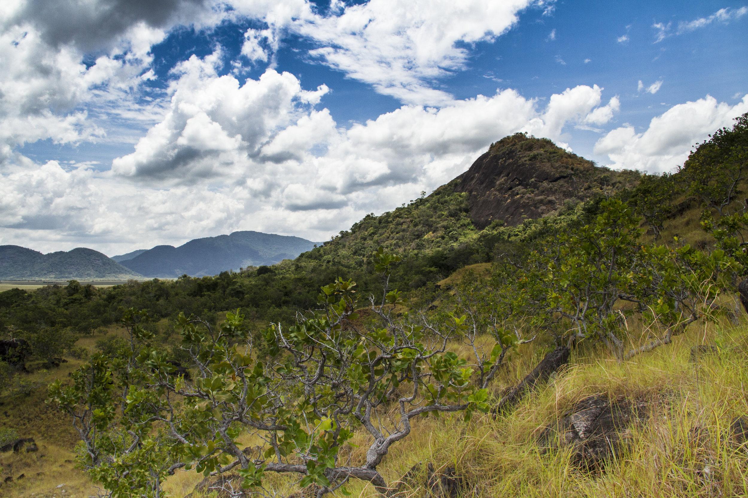 Guyana_sm-0145.jpg