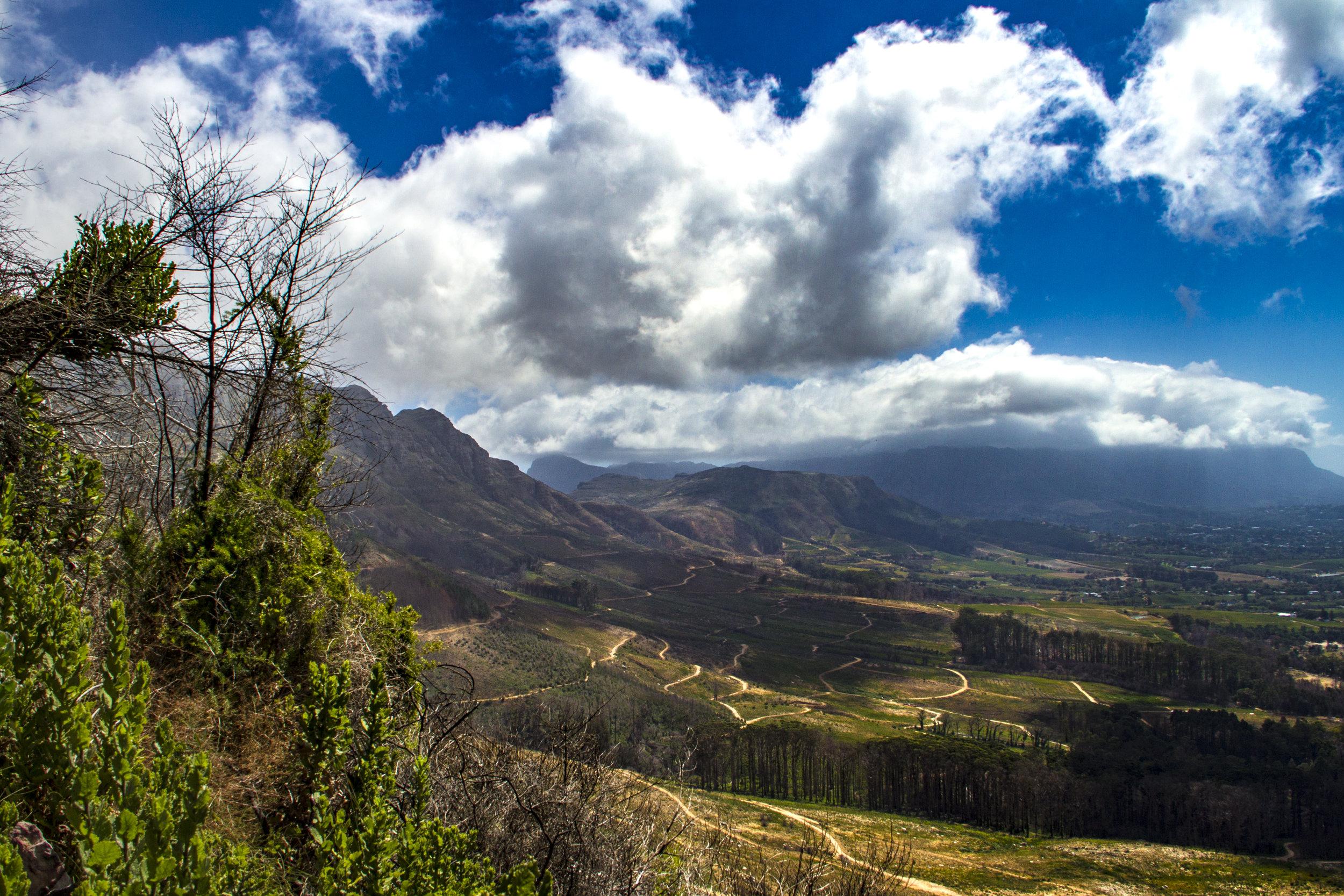 SouthAfrica_sm-5036.jpg