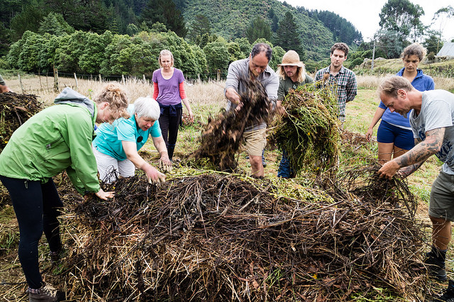 this one at the Waiohanga Retreat Centre (permaculture course 2018)........,