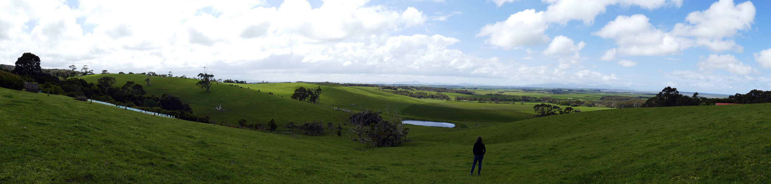 The same landscape panorama under a sudden scudding cloud's shadow, with client in the foreground.