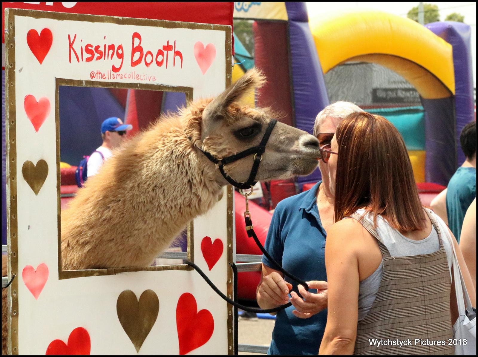 Llama Kissing Booth