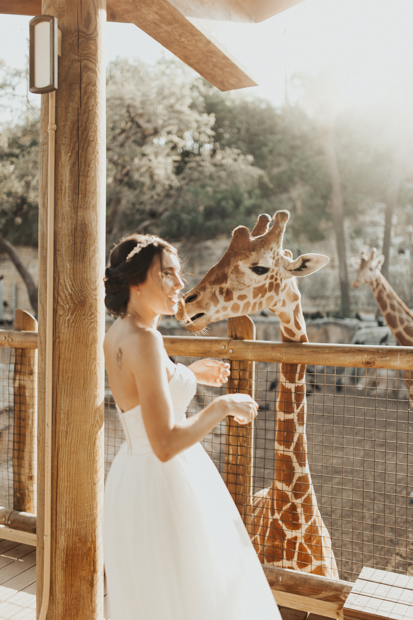 L'Cee's Zoo Bridal Session - This definitely made for one of the most unique bridal sessions we have had the privilege to shoot! Her and her team of friends made for an amazing and unforgettable time not to mention we had the whole zoo practically to ourselves!