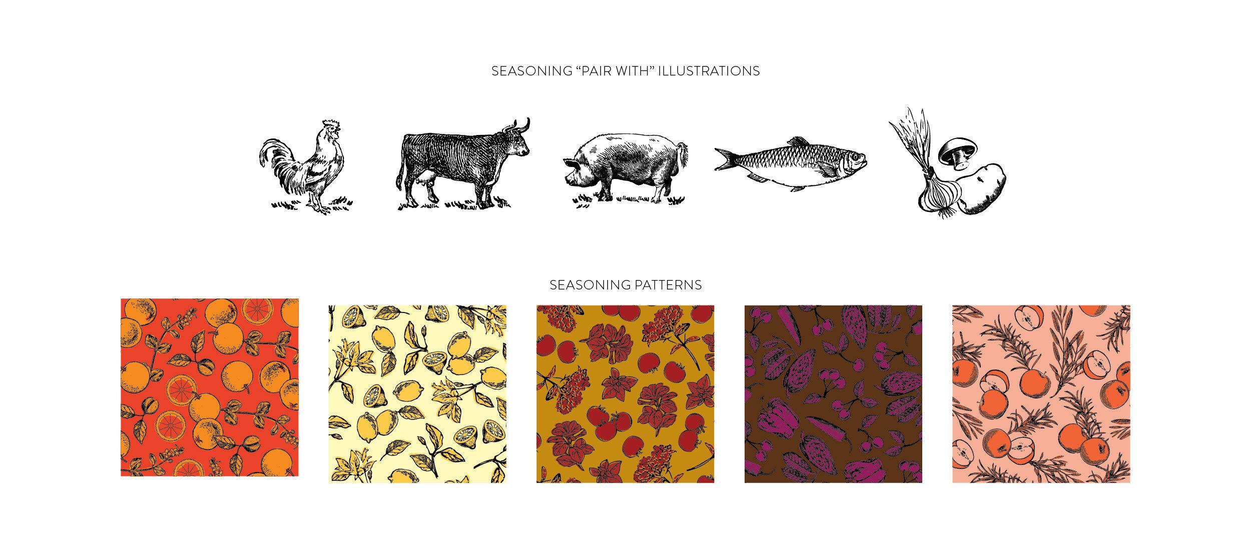 EmilyGuin_DashSeasonings_BrandingElements_Illustrations-Patterns.jpg