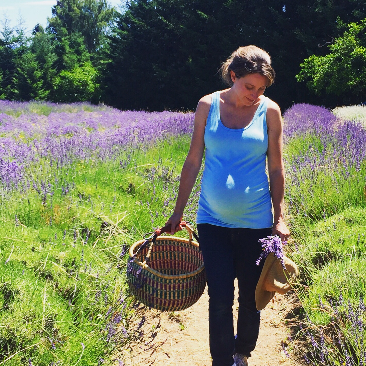 Little Green lives- The calm before the storm - A Little Sunday morning lavender picking.