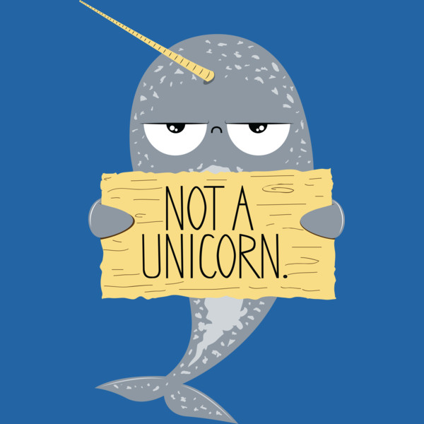 Cute-Narwhal-Not-A-Unicorn.jpg