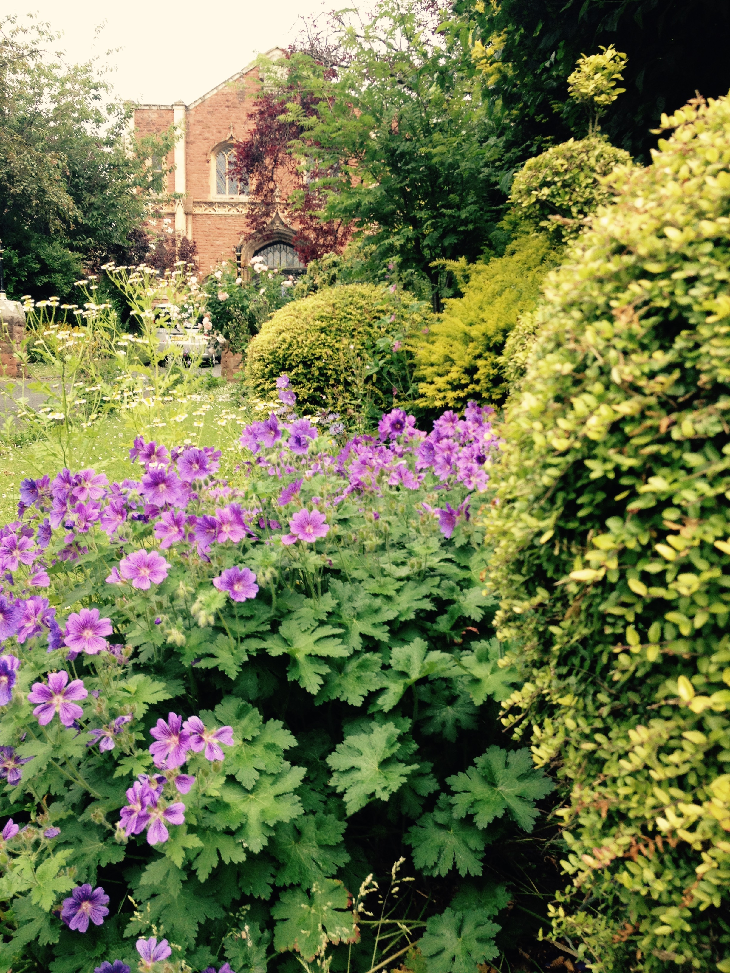 In front of the church is a floral peace garden which attracts a lot of wildlife